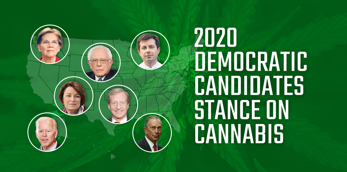 2020 Democratic Candidates Stance on Cannabis image